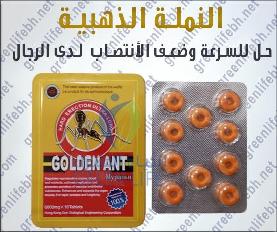 النملة الذهبة
